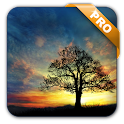 Sunset Hill Pro Live Wallpaper icon