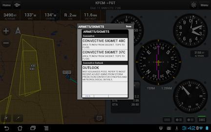 Garmin Pilot Screenshot 32