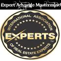 Expert Mind logo