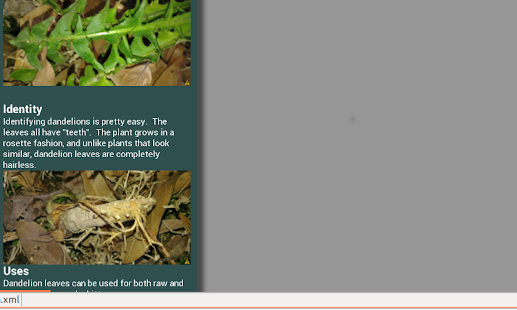 Edible Wild Plant Guide - screenshot thumbnail