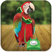 Parrot Phone Call