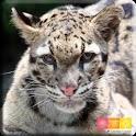 i 動物園 のいち動物公園版 icon