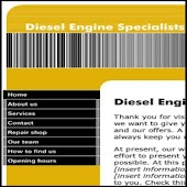 Diesel Engine Specialists