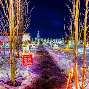 2423.jpg Christmas light Dec -14-2423.jpg
