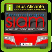 iBus Alicante