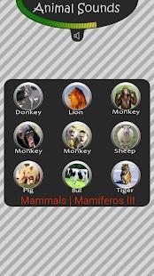 Sons de Animais