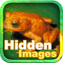 Froggy Hidden Images icon