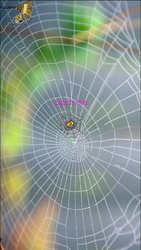Catch the Spider