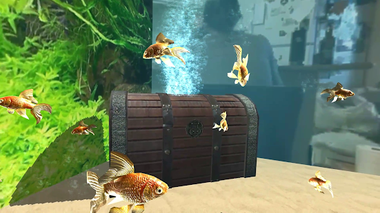 Goldfish VR for Cardboard- screenshot thumbnail