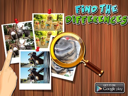 Find-Differences-Animals 3