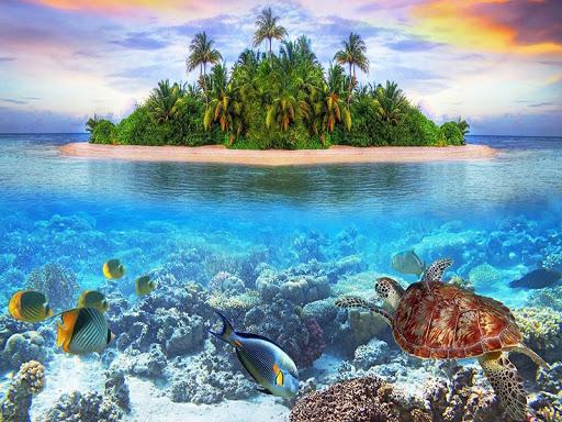 海底世界拼圖