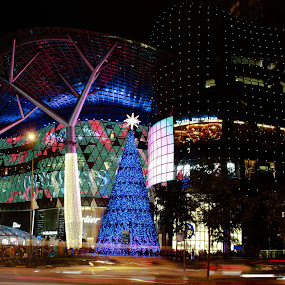 Orchard Road Light-up by Venkat Ramanan - City,  Street & Park  Street Scenes ( singapore street, orchard road, christmas eve, light-up, 24-12-2013 )