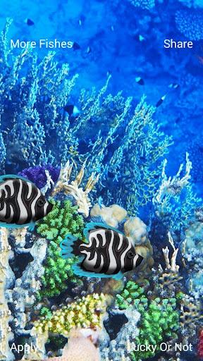 真正的水族館3D壁紙