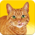 Friskies® Call Your Cat icon