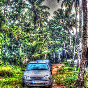 HDR by KarthiKeyan Chandrasekar - Transportation Automobiles ( car, hdr, nature, kerala, morning )