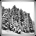 Nevicata 360° Sfondo Live icon