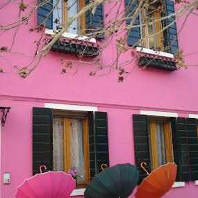 Feeling of Burano by Pipia Kanjeva - City,  Street & Park  Street Scenes ( #burano #italy #venezia #umrella #window,  )