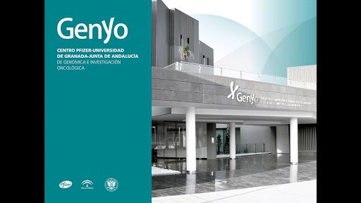 Genyo. Grupos y Unidades