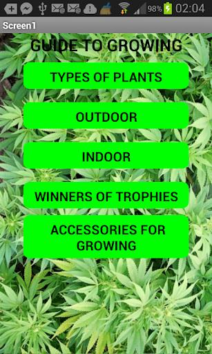 Marijuana 2014 guide