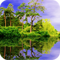 Forest Pond Live Wallpaper icon