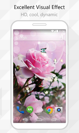 Chinese Rose Live Wallpaper