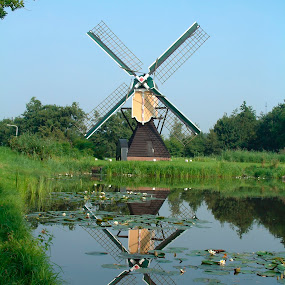 Maresdijk Wip Windmill by Pete Bobb - Buildings & Architecture Public & Historical ( blue sky, waterpump, holland, 1735, windmill,  )