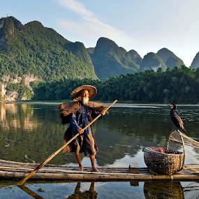 Fisherman  by Shalabh Sharma - People Professional People ( yangshuo, li river, cormorant fisherman, guilin, fisherman, guangxi, china )