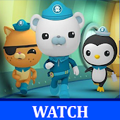 Octonauts Video Collections