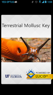 Terrestrial Mollusc Key- screenshot thumbnail
