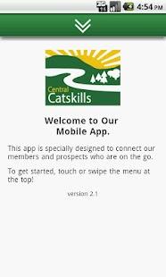 Central Catskill Chamber - NY- screenshot thumbnail