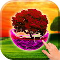 Sunset tree wallpaper icon