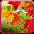 Autumn Live Wallpaper file APK Free for PC, smart TV Download