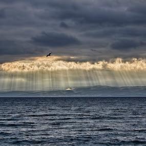 beauty... by Joško Tomić - Landscapes Cloud Formations
