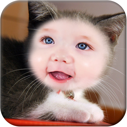 Cat Funny Photo Frame LOGO-APP點子