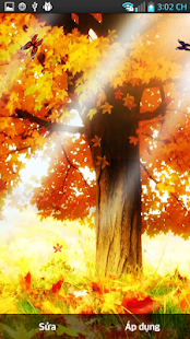 秋季現場Wallaper2014
