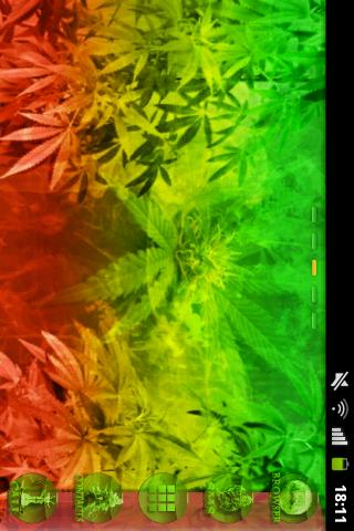 GO Launcher EX Theme Rasta - screenshot