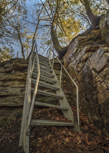 Bottom of Stairs by Aaron Campbell - City,  Street & Park  City Parks ( plains township, hemlocks, luzerne county, stairs, hdr, nature, sunny, textures, moss, trees, pennsylvania seven tubs natural area, leaves )