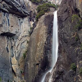 Lower Yosemite Falls by Ken Miller - Landscapes Waterscapes ( national park, yosemite, california, lower yosemite falls,  )