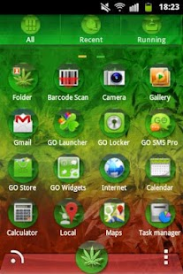 GO Launcher EX Theme Rasta - screenshot thumbnail