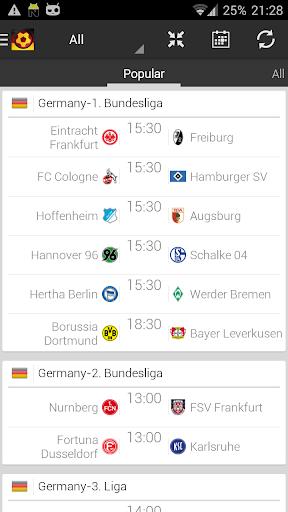 德國足球 - 德甲