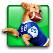 Jerry Rice Dog Football