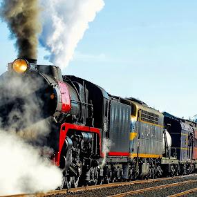 Beautiful Old Steam Locomotive by Chris KIELY - Transportation Trains ( railway, locomotive, beautiful, rail, train, tracks, steam )