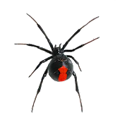 Arachnophobia Free LW