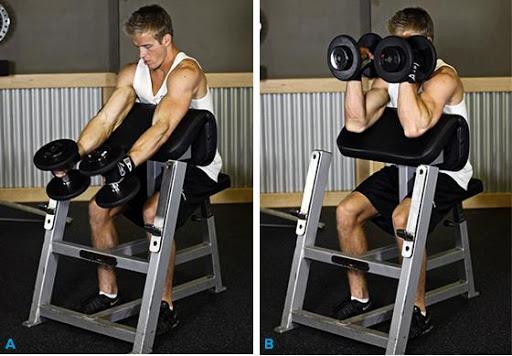 Bodybuilding -Biceps Workout