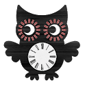 Owl Clock Widget icon