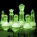 Chess Pro icon
