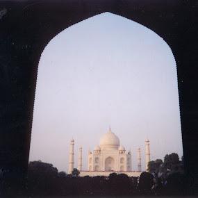 TAJ MAHAL by Soumitra Biswas - Buildings & Architecture Public & Historical