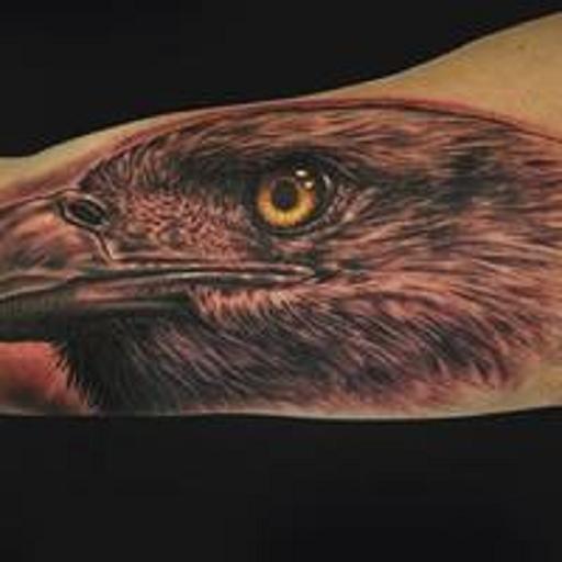 Eagle Tattoos 生活 App LOGO-硬是要APP