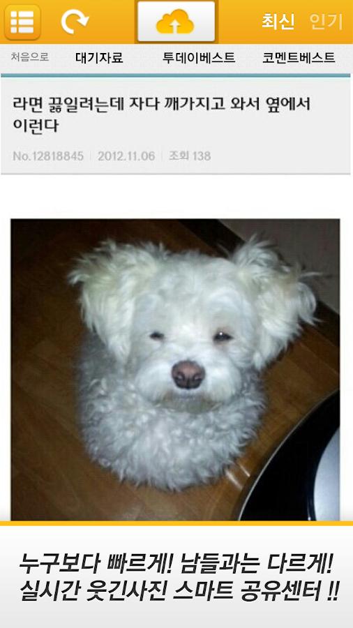 웃끼지마 - 대한민국 최대 모바일 개드립 유머 서비스 - screenshot