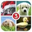 Угадай слово 3! ~ 4 картинки icon